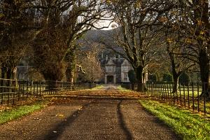 Muckross House Alley At Sunset,Killarney National Park,Ireland